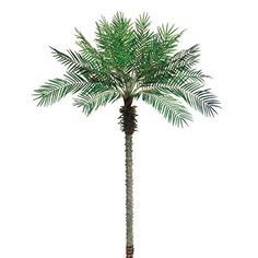 8'6' Phoenix Date Silk Palm Tree >>> Check out this great product.