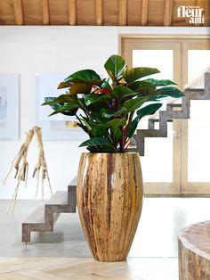 BANANA planter by fleur ami ● Pflanzgefäß von fleur ami