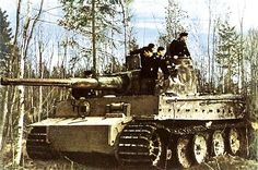 German World War 2 Colour Tiger Panzer Tank In Position