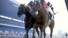 Affirmed and Alydar, one of the greatest rivalries in horse racing.