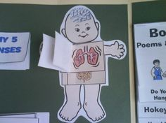 Good lapbook ideas- the pre-k human body is a must die Miss. B