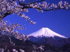 Volcano Pics | Volcano Facts - Mt. Fuji, in Japan, one of the most beautiful and iconic stratovolcanoes. I love to look at them and learn about them, but it's sobering to consider that Mt. St. Helens was just this beautiful before it exploded.