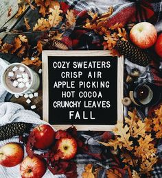 Cozy sweaters, crisp air, apple picking, hot cocoa, crunchy fall leaves   Pinterest: ☾OohmyJupiterr