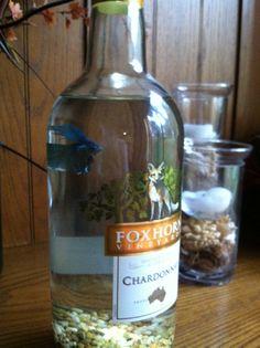 Beta fish wine bottle