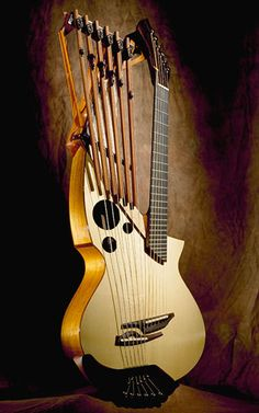 strange looking guitars | ... string fanned fret rosewood harp guitar. That would be perfect