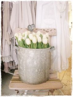 Old pot full of white tulips! I need to plant some bulbs in my rescued pots.