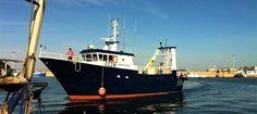 Decreto attuativo arresto temporaneo anno 2015 – DD n°10207 Alleghiamo il decreto integrale per l'attuazione del fermo 2015 del Mipaaf. allegato: <<DD 10207 del 17.06.2016 attuativo fermo pesca anno 2015>>