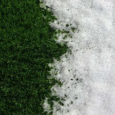 Our turf is weather resistant!
