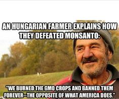 How a Hungarian farmer defeated Monsanto