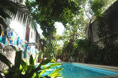 Our beautiful swimming pool. Paradise found in downtown Merida Paradise Found, Beautiful Pools, Merida, Hostel, Swimming Pools, Cool Stuff, Outdoor Decor, Nature, Beauty