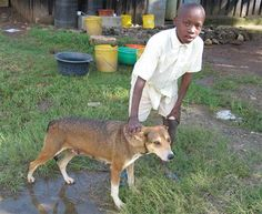 Newborn Baby Abandoned in a Kenyan Forest Was Saved by a Stray Dog