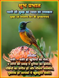 Good Night Hindi Quotes, Good Morning Beautiful Quotes, Good Morning Gif, Morning Prayer Quotes, Good Morning Friends Quotes, Morning Prayers, Floral Henna Designs, Good Morning Images Flowers, Desi Quotes