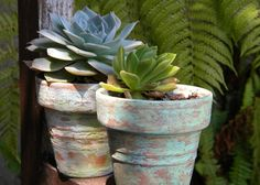 301 best Succulents & Cacti images on Pinterest   Succulents ... Dry Garden Design With Pot Html on box gardens designs, pinch pot designs, flower garden designs, garden gate designs, garden trellis designs, garden planters designs, rock gardens designs, diy garden designs, water garden designs, flower pot designs, potted plant designs, dish gardens designs, container gardens designs, stone gardens designs, patio pot designs, herb gardens designs, potted vegetable garden designs, pot people designs, indoor garden designs, mosaic pots designs,