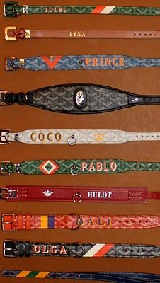 goyard dog collars, I want one when I get a dog, a blue one for my future golden doodle