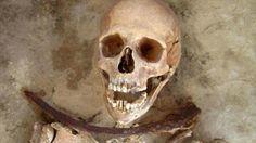 Encontraron restos de vampiros? Susto!