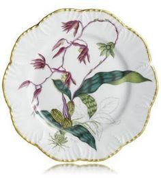 Alberto Pinto Jardin D'Orchidees Dinner Plate