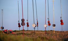 """Climate conductor ... Harmonic Fields, by Pierre Sauvageot. Photograph: Vincent Lucas.  Sauvageot describes his creation as """"a symphonic march for 1,000 aeolian instruments and moving audience"""". It is not only a striking piece of land art, but a carefully constructed piece of music, with an integral balance of theme and structure. """"It's important that it is not just a circuit of weird noises,"""" Sauvageot says. """"The experience develops through individual movements."""""""