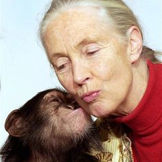 Dr. Jane Goodall with baby Chimp   XFINITY Movie Blog by Comcast
