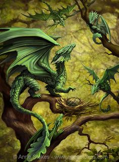 Dragon card by Anne Stokes. For added fun, the inside of the card includes illustrated facts about the dragon, including size, habitat and distinguishing features! Dragon Vert, Green Dragon, Dragon 2, Magical Creatures, Fantasy Creatures, Dragon's Lair, Dragon Artwork, Dragon Pictures, Dragon Images