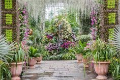 A Show of Over 6,000 Orchids Celebrates a Victorian-Era Obsession | Travel | Smithsonian