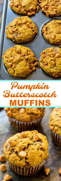 Pumpkin Butterscotch Muffins are perfect for fall!