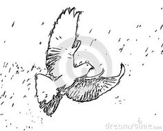 Illustration about Flying Dove Adult Children Coloring Book Black White Sketch Cartoon Children Anti-stress Relaxing Coloring. Illustration of coloring, sketch, flying - 133224864 Adult Coloring, Coloring Books, Anti Stress, Adult Children, Sketch, Cartoon, Black And White, Illustration, Animals
