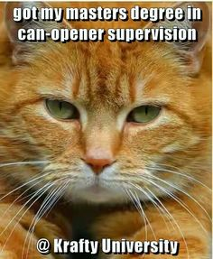 got my masters degree in can-opener supervision @ Krafty University http://cheezburger.com/9035193600