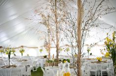 Tent posts: Burlap or some beige tulle with branches around.