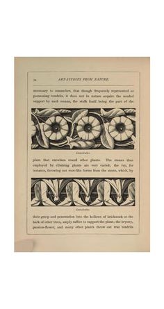 Art-studies from nature, as applied to design, comprised in 4 papers by F.E. Hulme [and others].  Published 1872