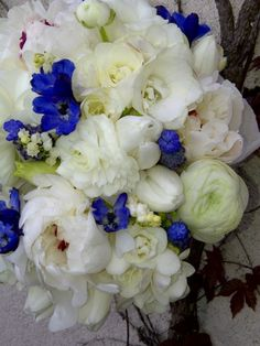 floral designs by Lilies White  white peonies, lily of the valley, tulips, ranunculus, double freesia and blue delphinium