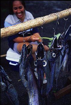 Fish Market, Avarua Town, Rarotonga, Cook Islands