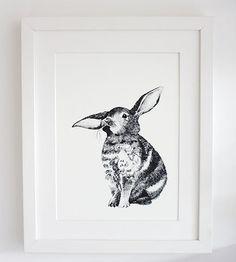 Father Rabbit Framed Print   Bunny