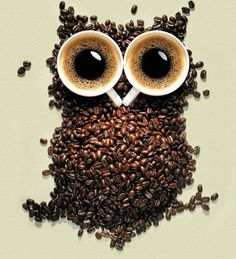 One of my favorite images, I like the use of coffee beans so I think this images is extremely creative and very unique in how the coffee beans build the image of an owl and the coffee cups represent the eyes. Owl Coffee, I Love Coffee, Coffee Art, Coffee Break, Best Coffee, Coffee Shop, Coffee Cups, Morning Coffee, Drink Coffee
