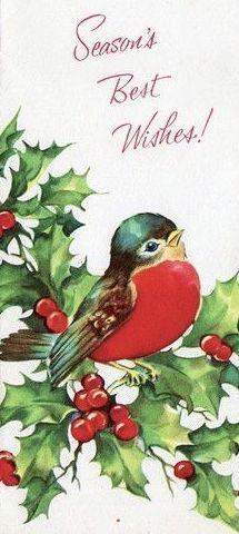 Anniversaire Carte De Vœux-Garden Birds on Feeding Table