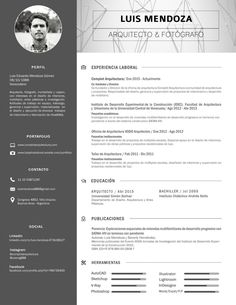 CV - Arquitecto Luis Mendoza