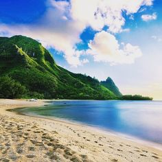 #TravelTuesday inspiration - Hawaii! Oh #Hawaii how we love you! Known as the #Paradise of the #Pacific Hawaii is made up of eight main #islands each unique in what they offer to travellers. As there are so many hotspots to #explore in Hawaii one of the best ways to do so is by #cruising. Hawaiian #cruises are great for Canadians as they often start and end in our own backyard #Vancouver! Click the link in our bio to see an overview of which cruise lines have great Hawaiian itineraries…