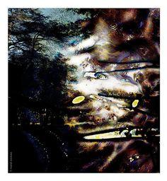 El jardí d'humuns III. El jardí d´humus 1994 - 2006. Manel Esclusa.
