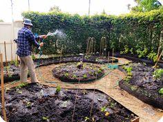 Urban Garden Design permaculture mandala garden design - great use of space! Vegetable Garden Design, Garden Landscape Design, Farm Gardens, Outdoor Gardens, Permaculture Design, Permaculture Garden, Potager Garden, Chinese Garden, Mandala