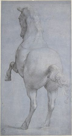 Anonymous - Rearing Horse, Italian, Florentine, 16th C. Black and white chalk on paper prepared with violet wash.