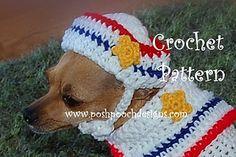Sailor Dog Dog -S2_hat_cpa_small2