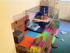 New Home - BinkyBunny.com - House Rabbit Information Forum - BinkyBunny.com - BINKYBUNNY FORUMS - HABITATS AND TOYS