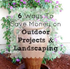 6 Ways To Save Money on Outdoor Projects and Landscaping   http://savingthefamilymoney.com/6-ways-to-save-money-on-outdoor-projects-landscaping/