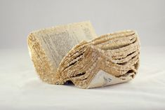 Alexis Arnold dips found books in a borax solution that freezes them in her Crystallized Book series.