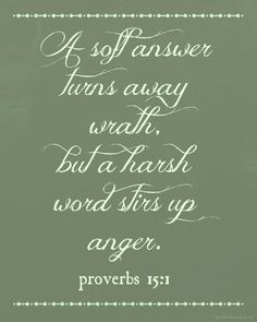 Proverbs 15:1  Lord, help me recognize harshness in my words...