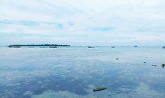 Island everywhere