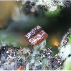 Starovaite Cupromolybdite, Cu3O(MoO4)2, and Lammerite,  Tolbachik Volcano, Kamchatka Oblast, Far Eastern Region, Russian Federation. red-brown orthorhombic crystals of cupromolybdite on dark-green crystals of lammerite from the type and only locality for the species