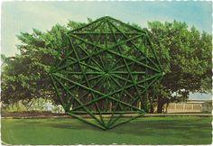 Shaun Kardinal – Embroidered Postcards | purple woods