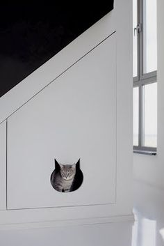 Cat compartment!!!! Oh this may just be the winner. Except make the door a swinging bookshelf. LOVE IT!!!!