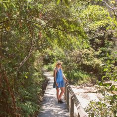 Spit Bridge to Manly walk on a sunny Sunday •••••••••••••••••••••••••• A beautiful walk that follows the coast, past pretty little beaches, through lush reserves and lookouts with panoramic views