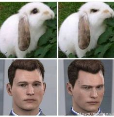 """Deviant for Connor ⭕ on Twitter: """"Connor's two mood.  #ConnorArmy #DetroitBecomeHuman  #BryanDechart #hankcon  #TracisAngels… """" Detroit Become Human Connor, Wattpad, Bryan Dechart, Drawing, Becoming Human, Detroit Meme, Videogames, Fandoms, Amelia Rose"""